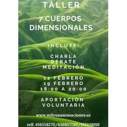 Taller 7 Cuerpos Dimensionales