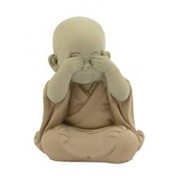 Imágen Shaolin no Veo